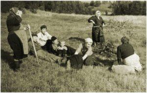 Kelttolaisia perunapelloilla 1900-luvun puolen välin paikkeilla.