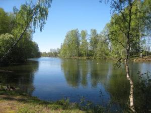 Myllynkylän idylliä 2012