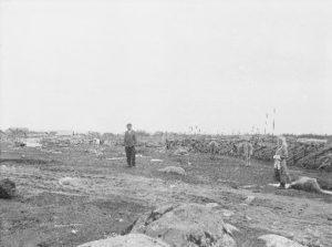 Miikkulaisten Alakylän väkeä karjaa paimentamassa.